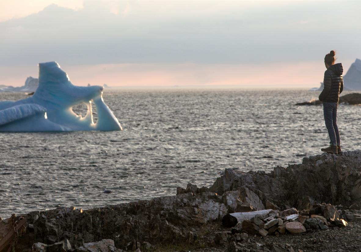 Watch for icebergs cruising down the coastline