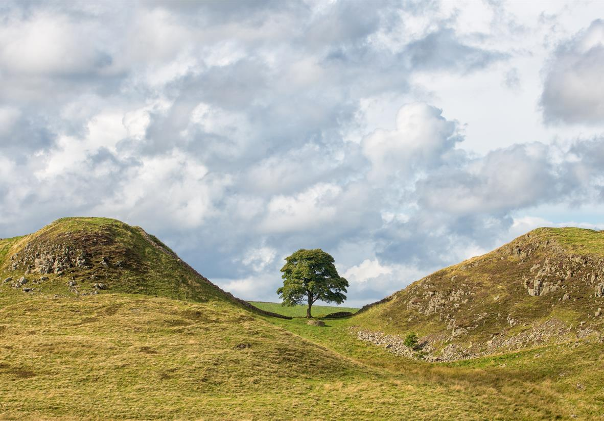 The iconic Sycamore Gap on Hadrian's Wall