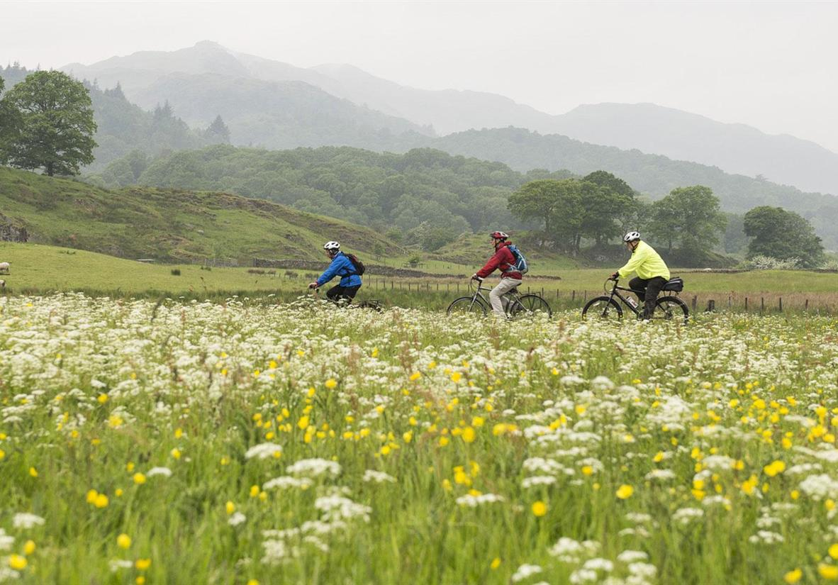 Easy-going cycling in the Lake District