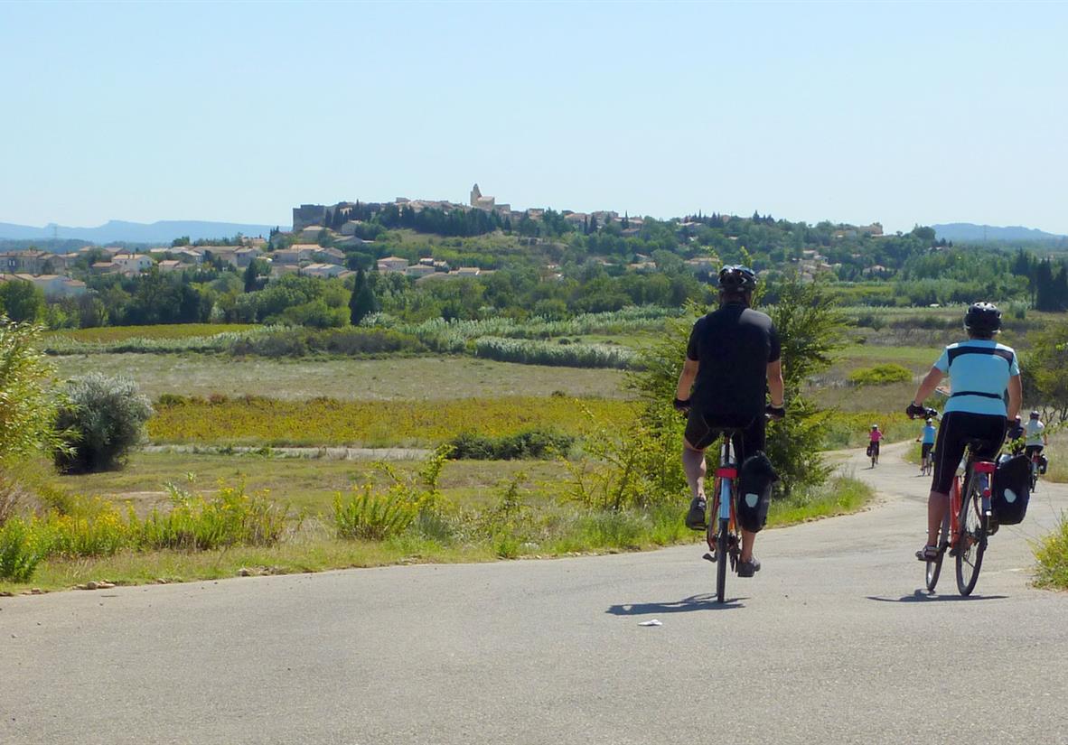 Cycling through Van Gogh landscapes