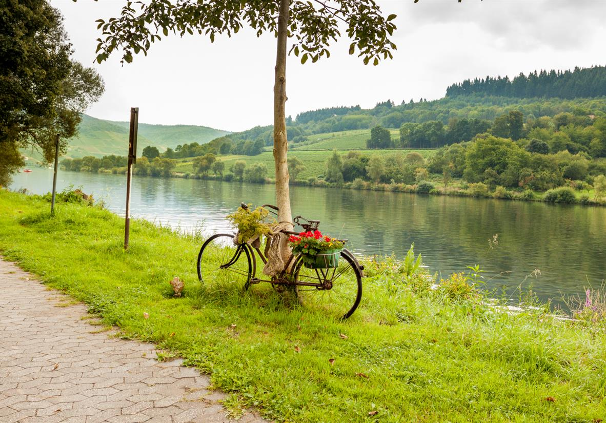 Pedal the easy-going riverside cycle path