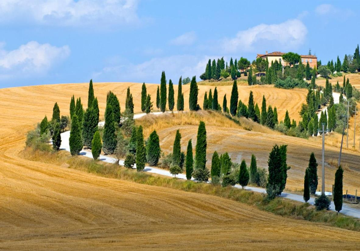 Cycle the cypress-lined hills of Tuscany