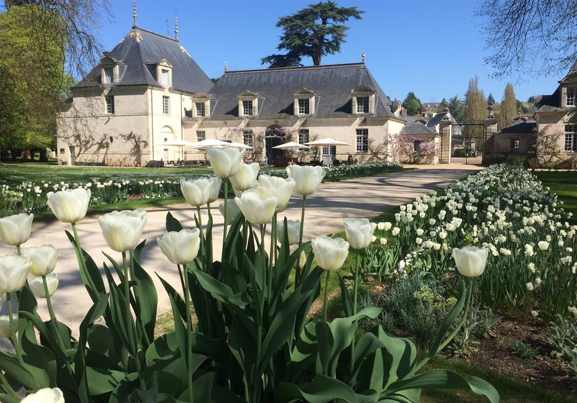 The beautiful chateau and tulips in Azay le Rideau