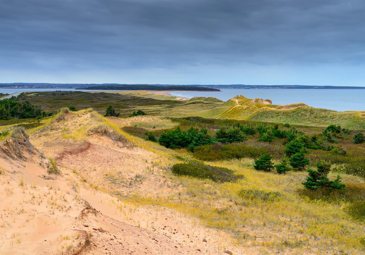 Sand Dunes, Brackley Beach