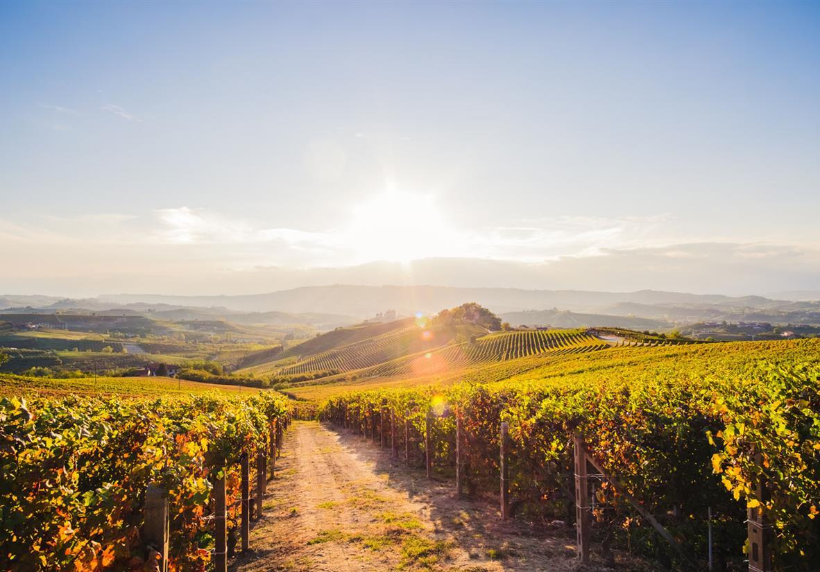 Piemont Wandern und Wein