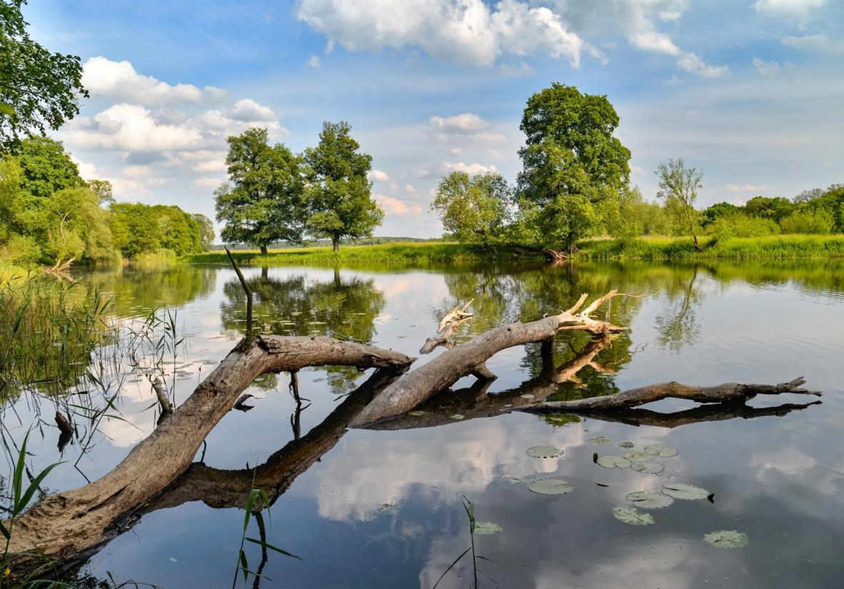 Nationalpark Unteres Odertal