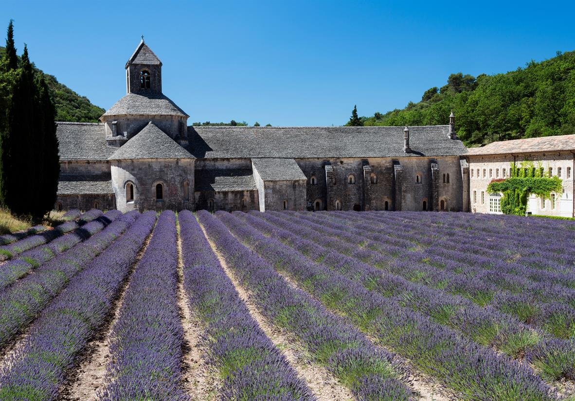 Abbey Senanques with it's iconic lavender fields