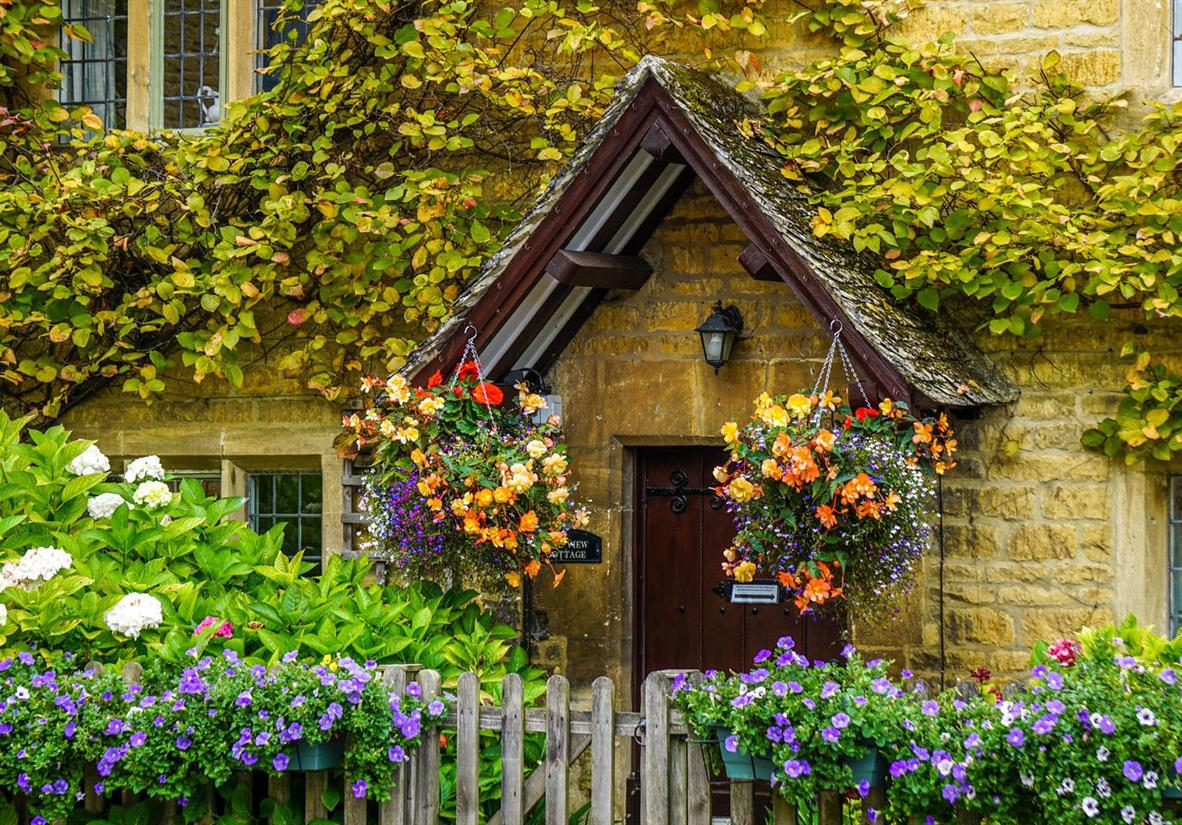 Cosy cottage hidden by colorful flowers