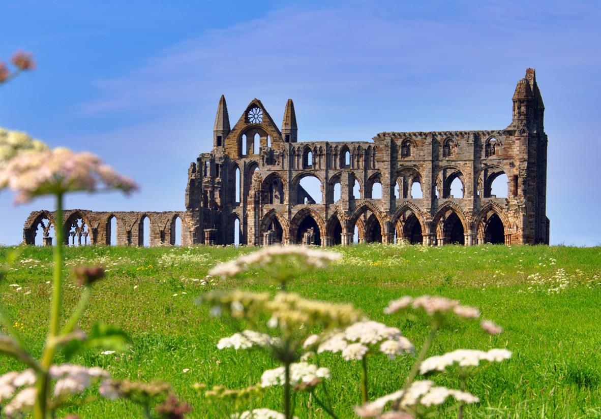 Find Whitby Abbey remains high above the town