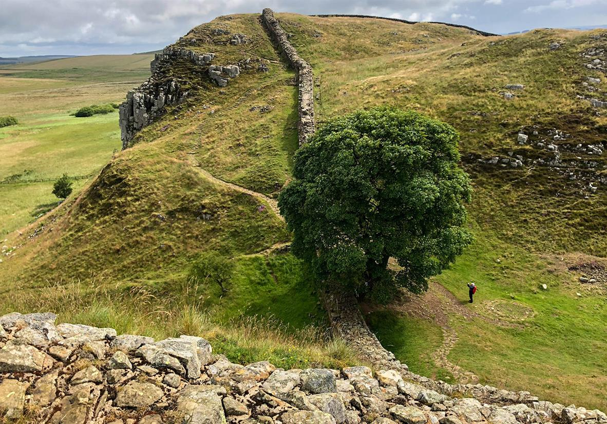 Walking down to the iconic Sycamore Gap