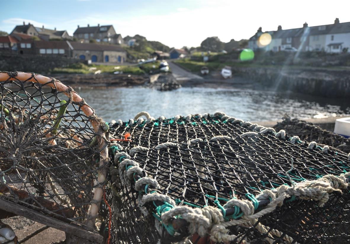 Nets catching the famous Craster Kippers