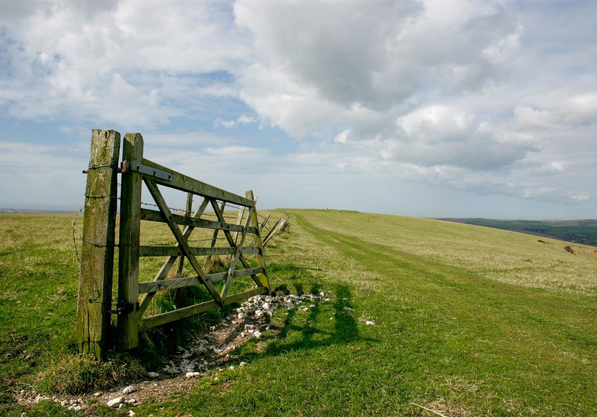 Example of the trail on South Downs Way