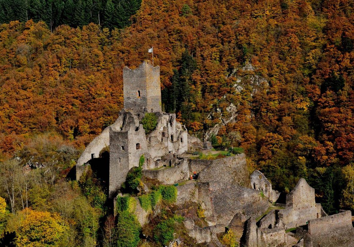 Manderscheider Burg im Herbst