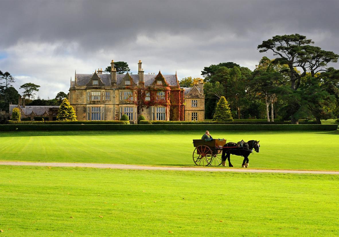 Muckross House Estate, Killarney