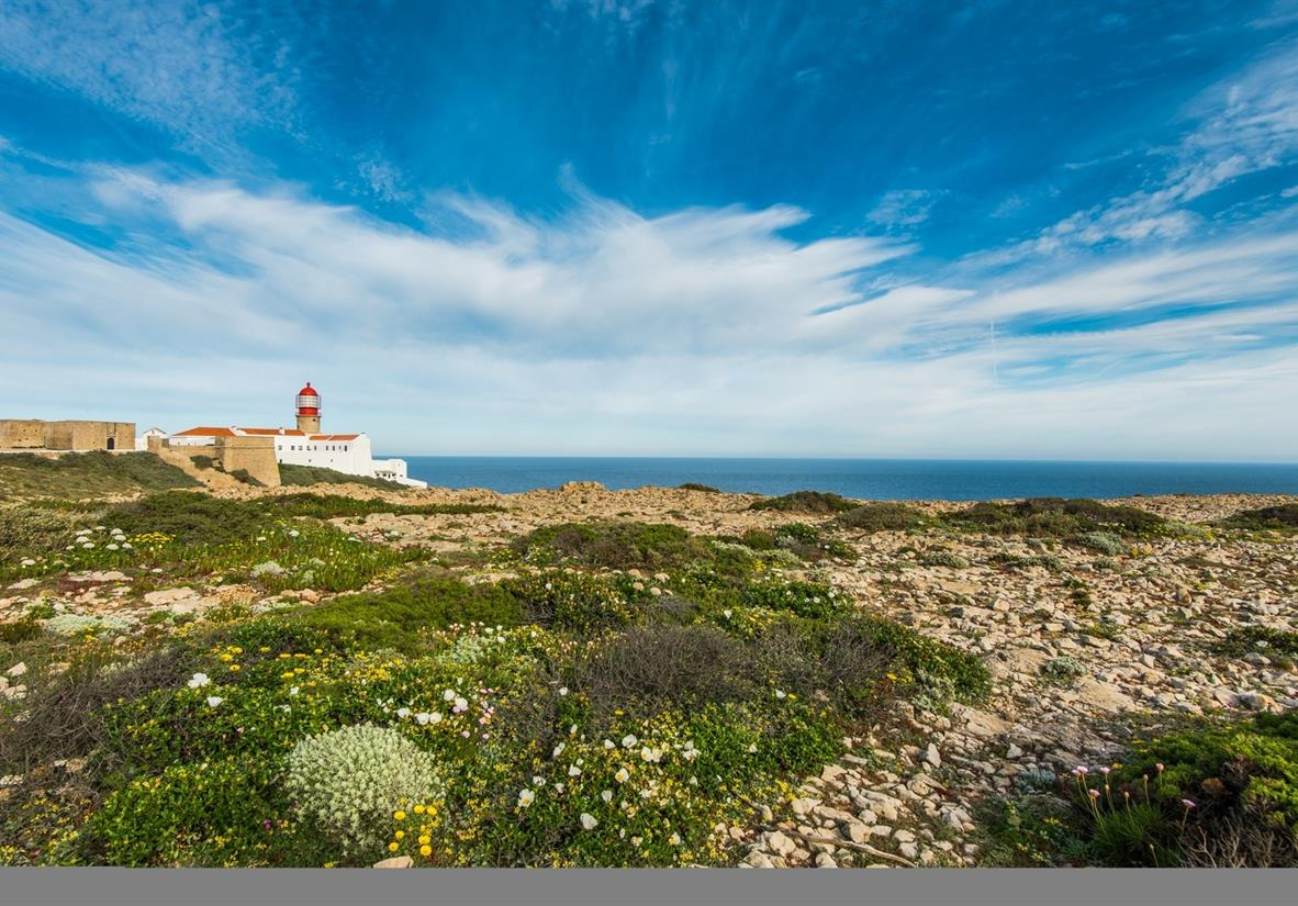 Rota Vicentina: The Wild Algarve