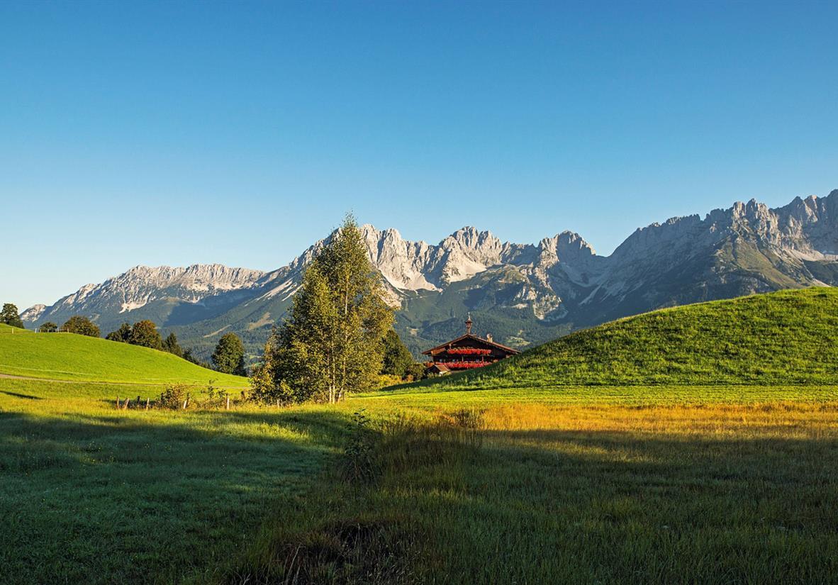Alm mit Kaisergebirge ©D.Reiter