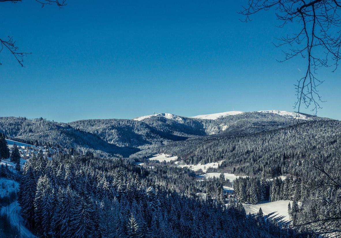 Winterparadies ©Hochschwarzwald Tourismus