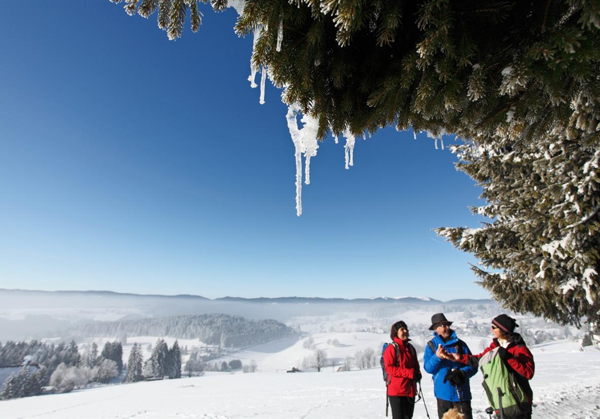 Glitzernde Winterpracht ©Hochschwarzwald Tourismus