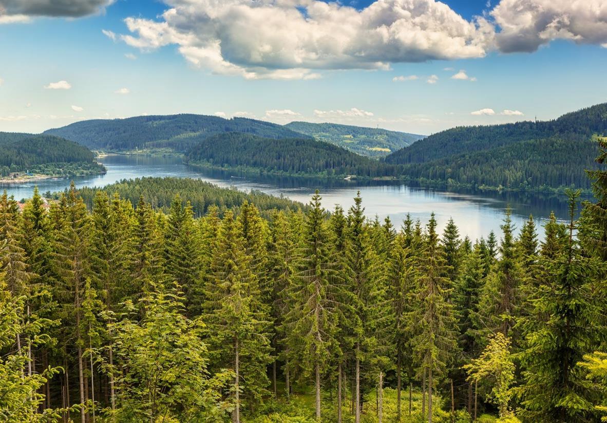 Der schöne Schluchsee eingebettet im Schwarzwald