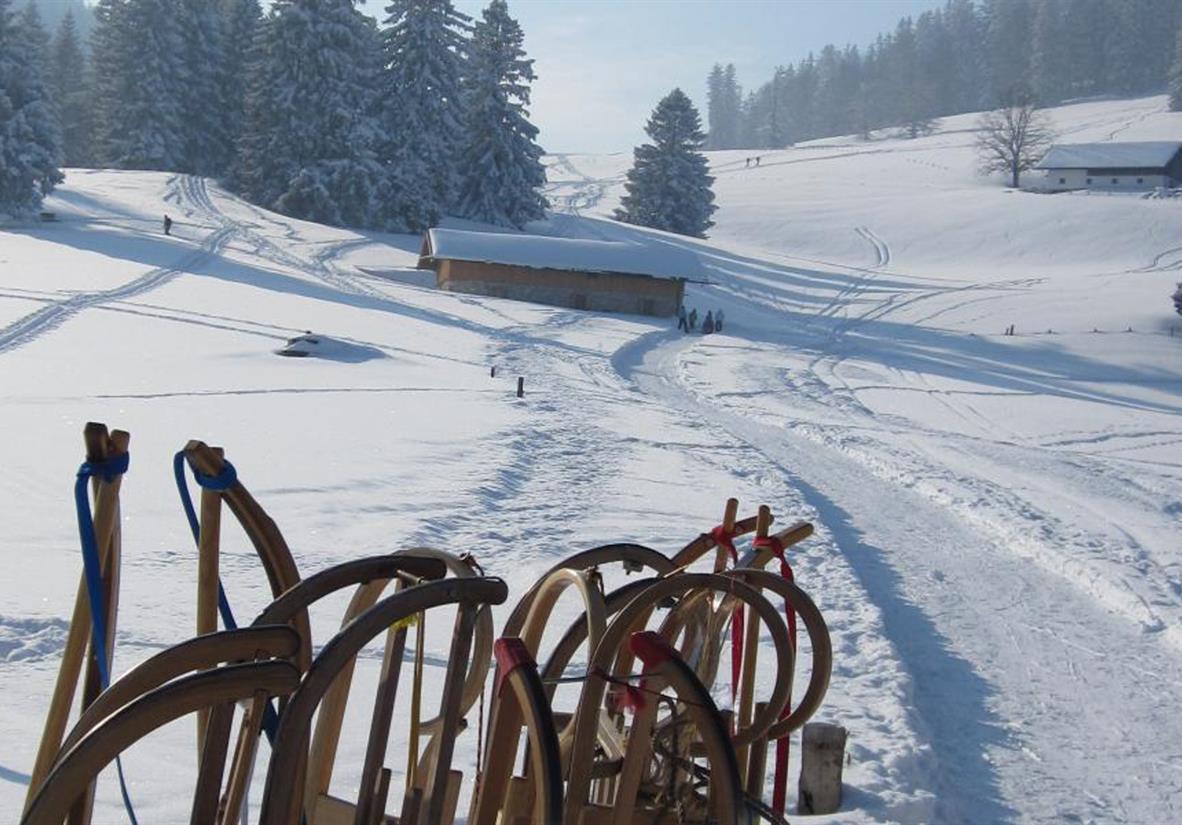 Rodeln ©Chiemsee-Alpenland Tourismus