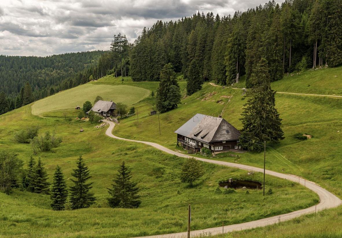 The Black Forest Gorge Trail (Copyright Schluchten