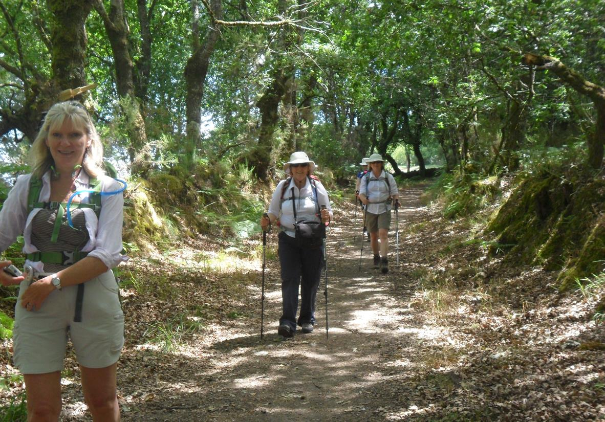 Hiking on the Camino Primitivo