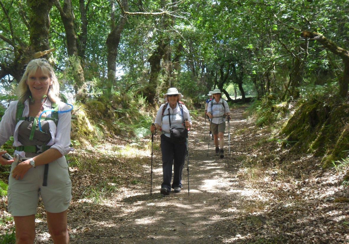 Hiking on the Camino Primitivo