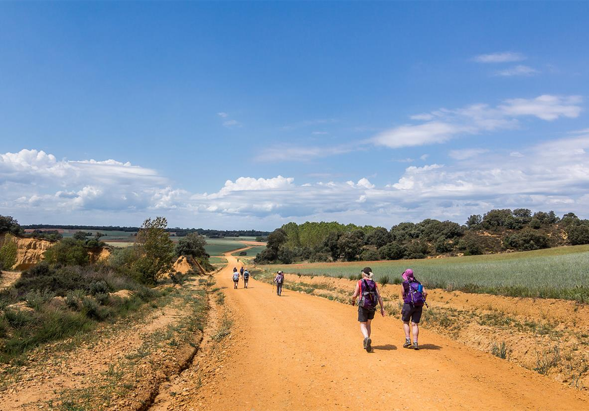 Expect a lot of varied terrain on the Camino