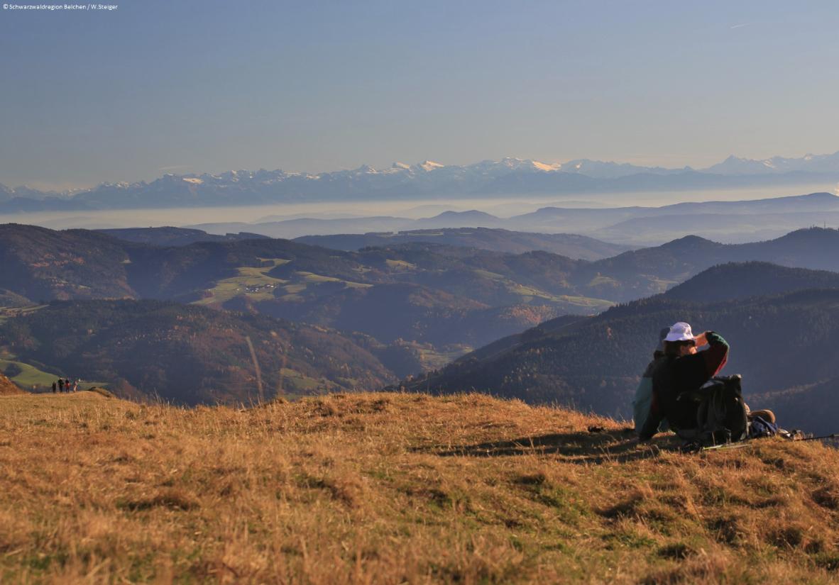 Fernblicke bis zu den Alpen