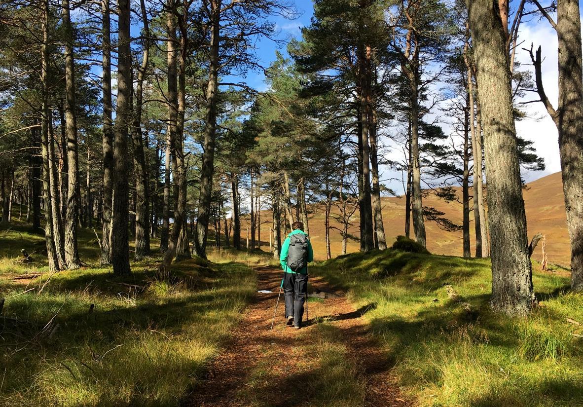Walks around Blair Catsle's estate