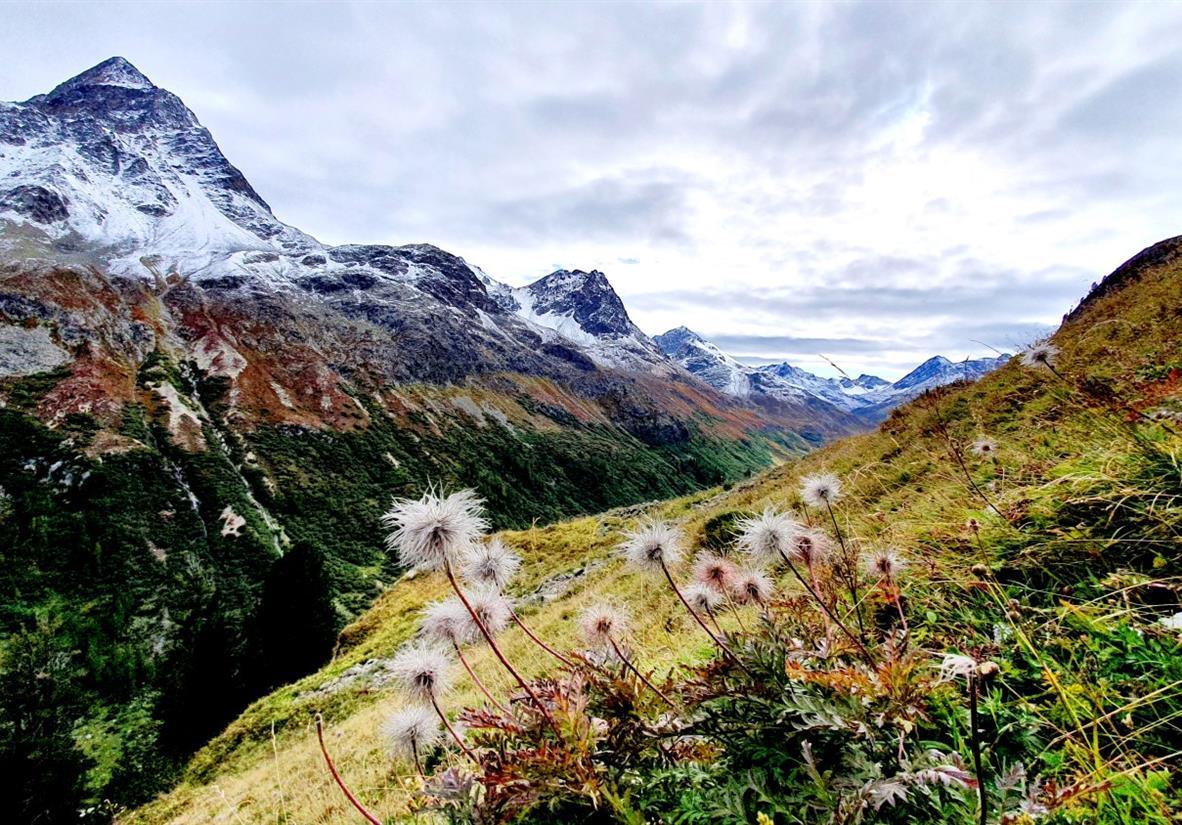 Über den Albula Pass