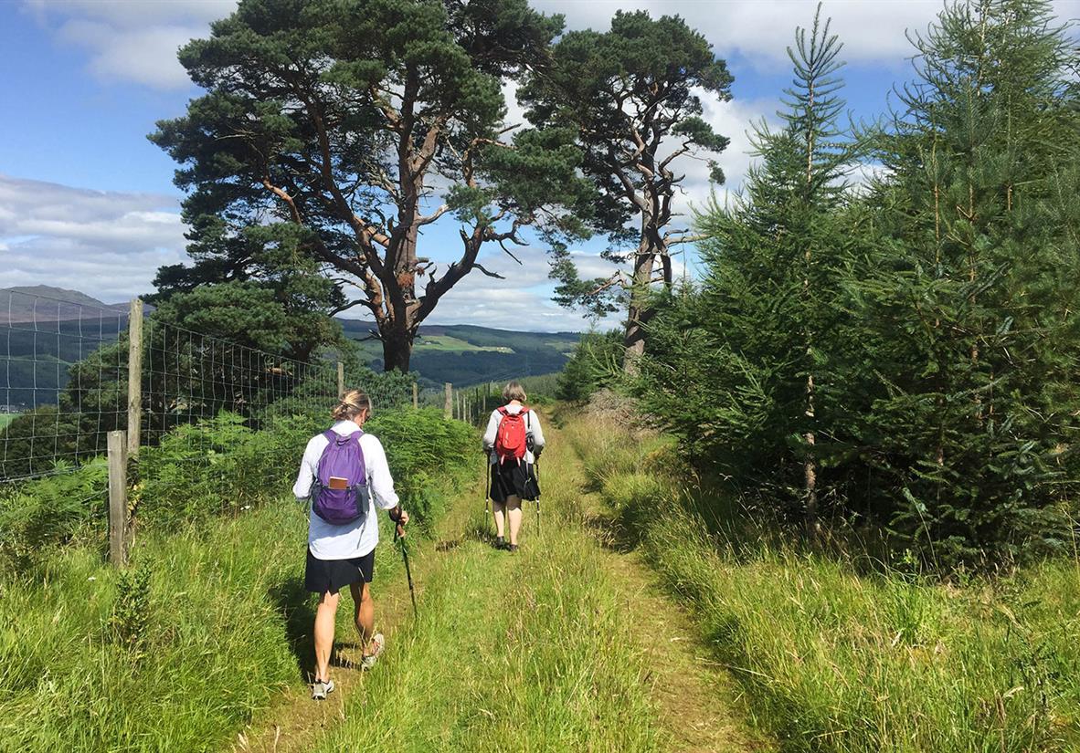 In the hills en route to Aberfeldy
