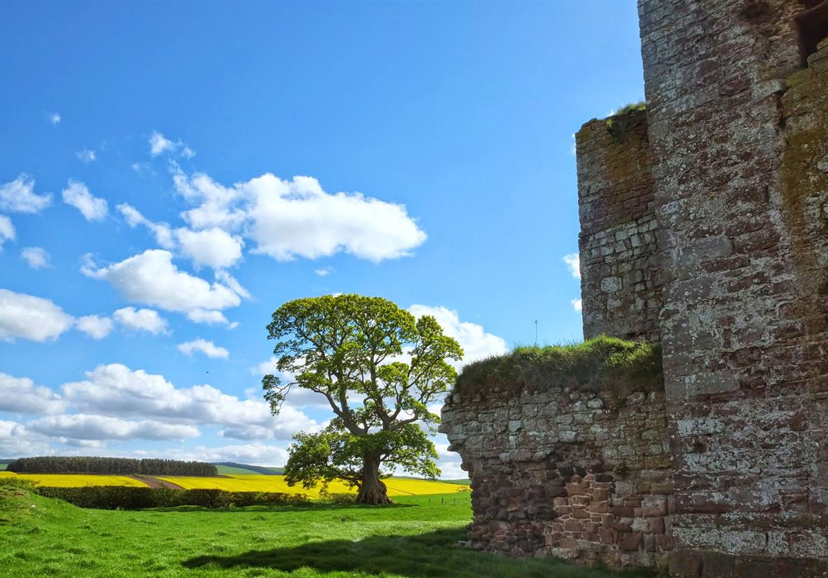 A sunny day on St Cuthberts Way