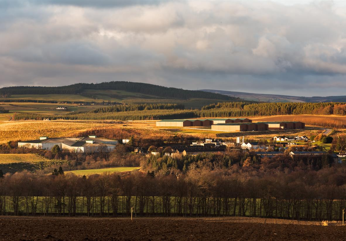 Macallan Distillery - set along farmland