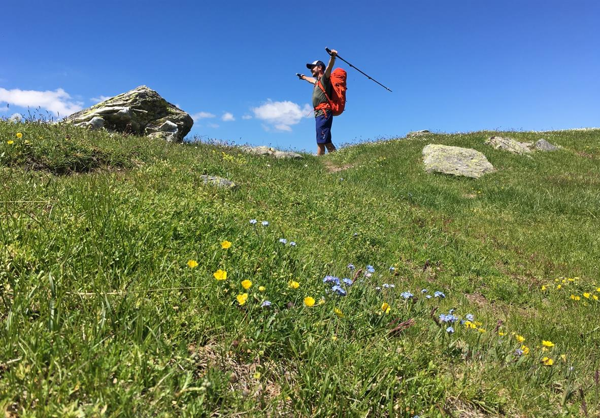 Walk through peaceful alpine meadows