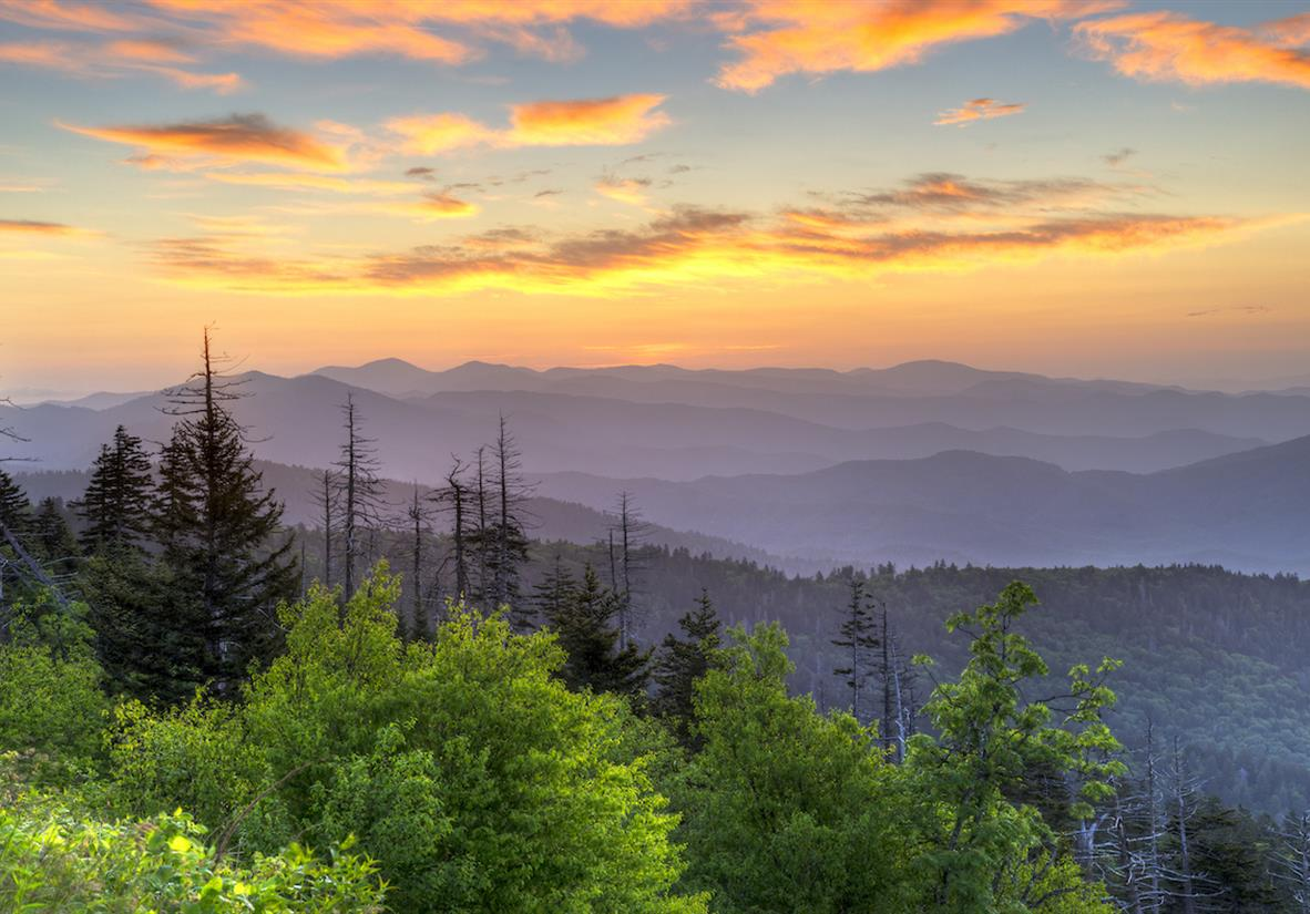 Clingman's Dome is the Smoky's highest peak