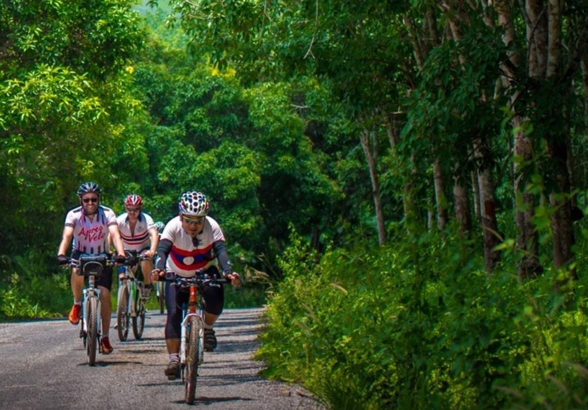 Cycle through the lush forests of Thailand
