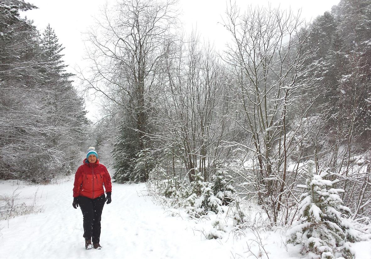 Verschneiter Weg am Lech