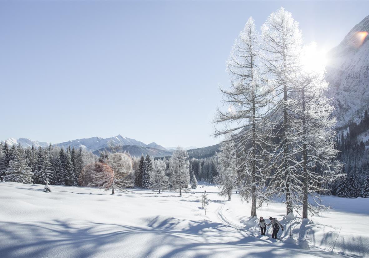 Wintermorgen im Leutaschtal ©TBV Seefeld-S.Elsler