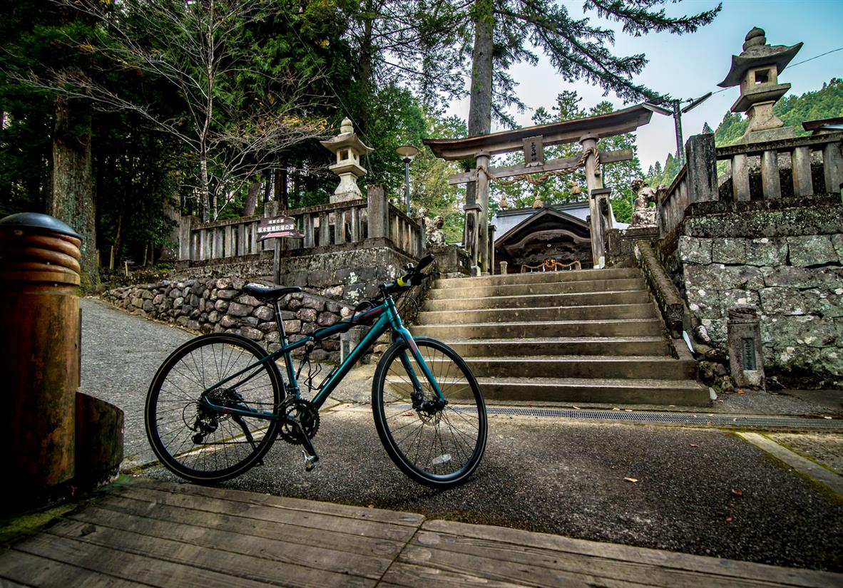 Pedal between temples and explore at your own pace
