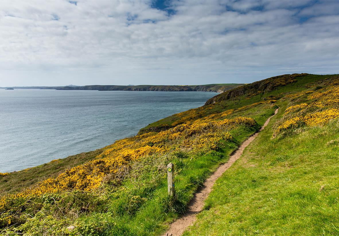 Walk the Pembrokehsire Coast path