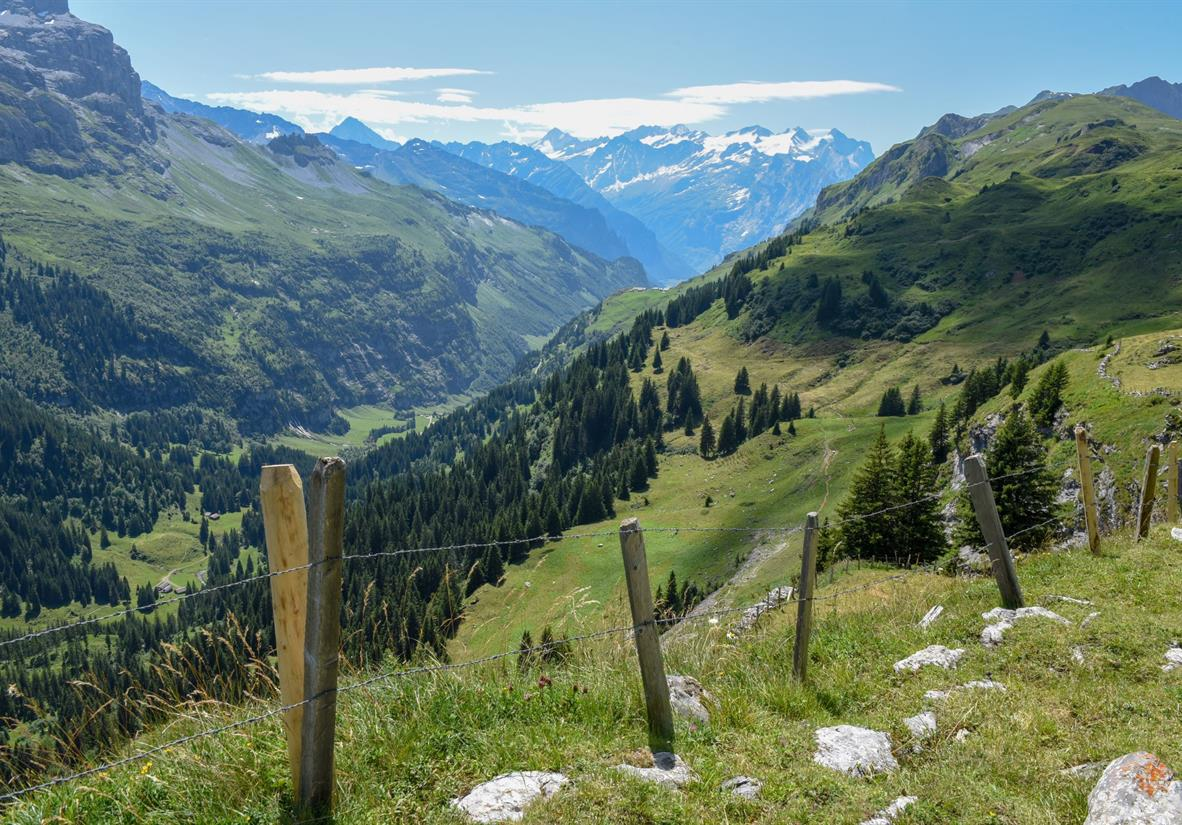 Trail by Engelberg