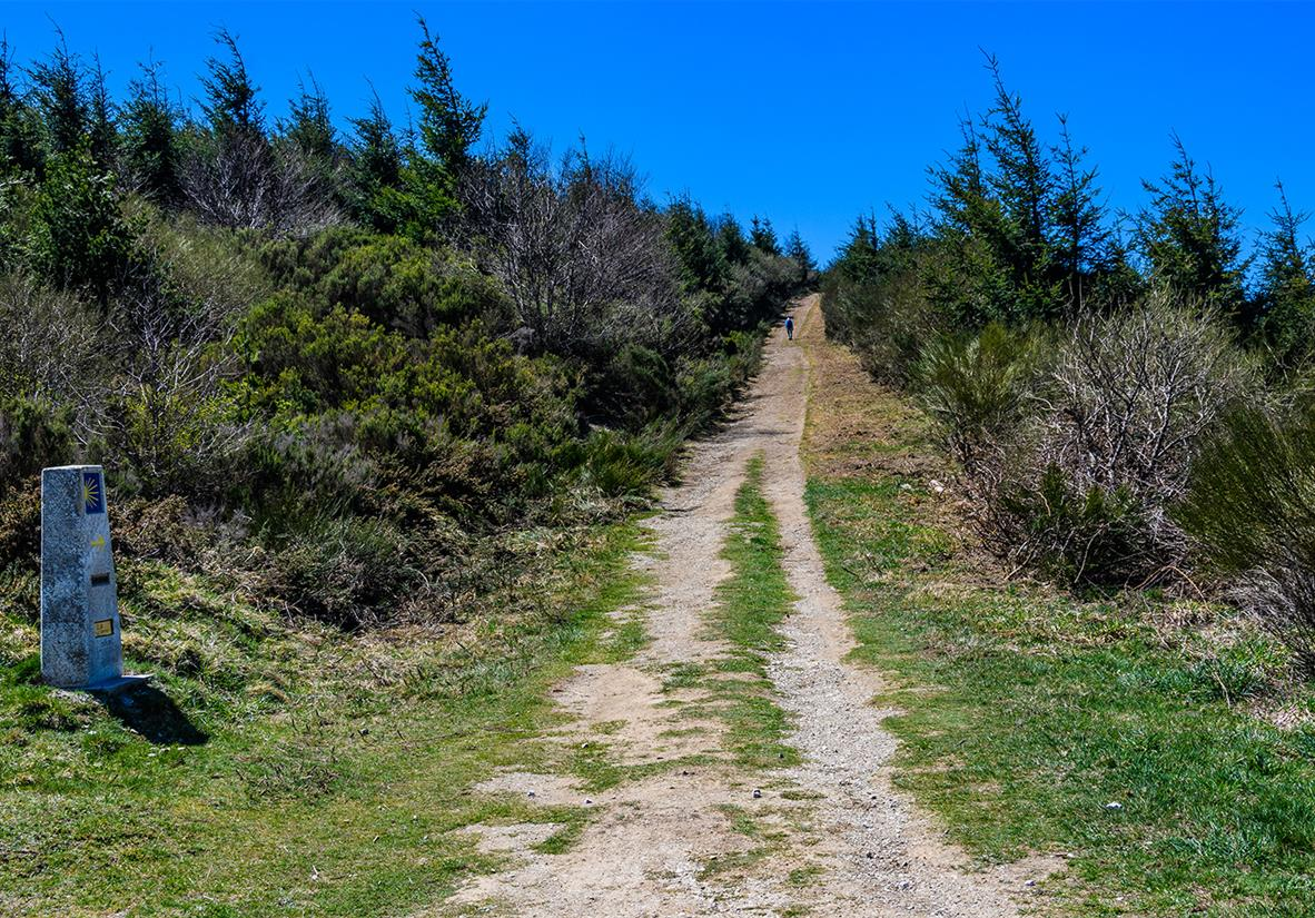 Walk Stage 4 of the Camino Frances
