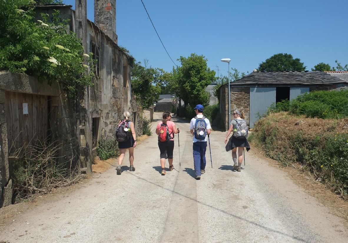 Easy walking on the final stage of the Camino