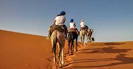 Discover Magical Morocco