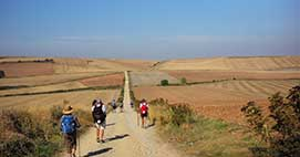 Walk the final 100km of the Camino