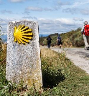 Jakobswege & Pilgerreisen