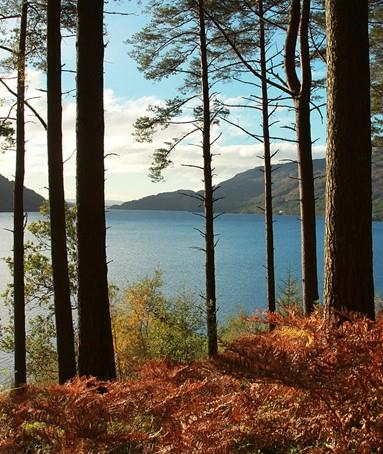 Why get Macs Adventure to book your West Highland Way?
