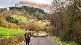 The Basque Country: 15 interesting things to know