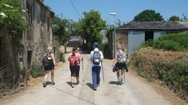 Pilgrimage walks: The Camino and many others